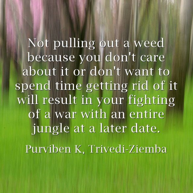 Not pulling out a weed now because you don't care about it or don't want to spend time getting rid of it will result in your fighting of a war with an entire jungle later.  _Purviben K. Trivedi-Ziemba