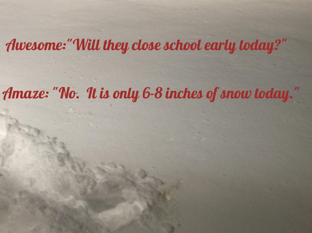 "Awesome:""Will they close school early today?"" Amaze: ""No. It is only 6-8 inches of snow today."""